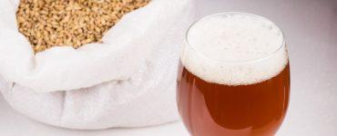varenie piva