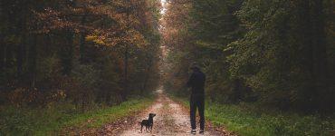 chôdza