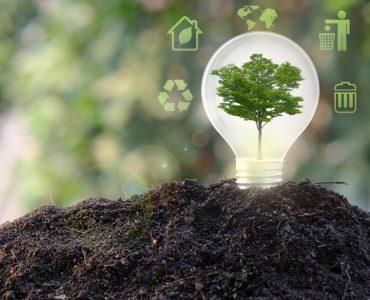 zelena transformacia